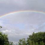 rainbow142