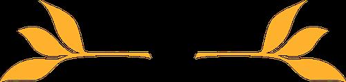 Yellow Fleurs