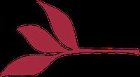 WEP leaf graphic